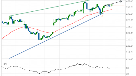Home Depot Inc. (HD) up to 233.87