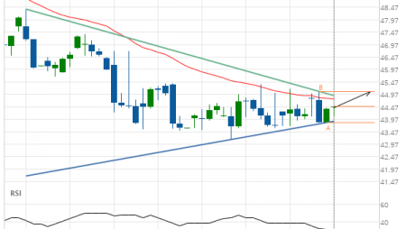 Exxon Mobil Corp. (XOM) up to 45.08